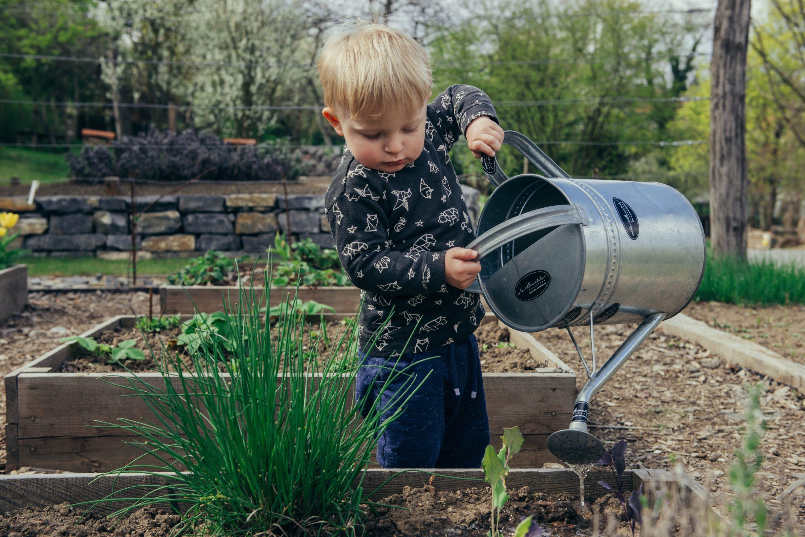 The Worldwide Growth of School Gardens: Insights into Switzerland, Ethiopia, Peru, and Myanmar